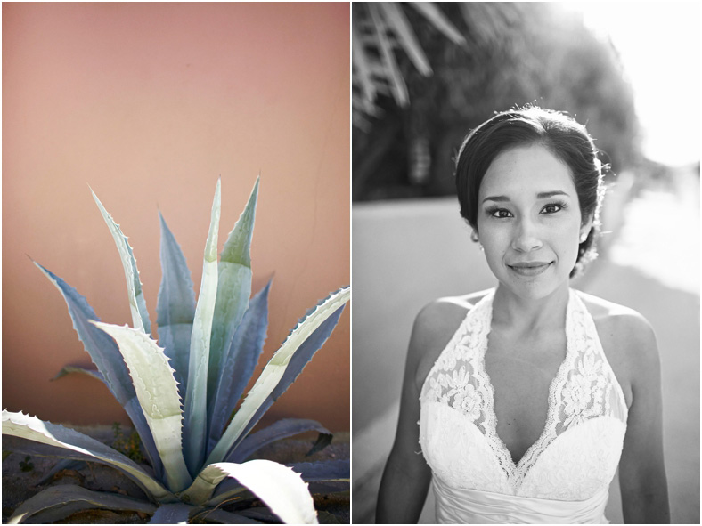 Mexico wedding, bride and succulent