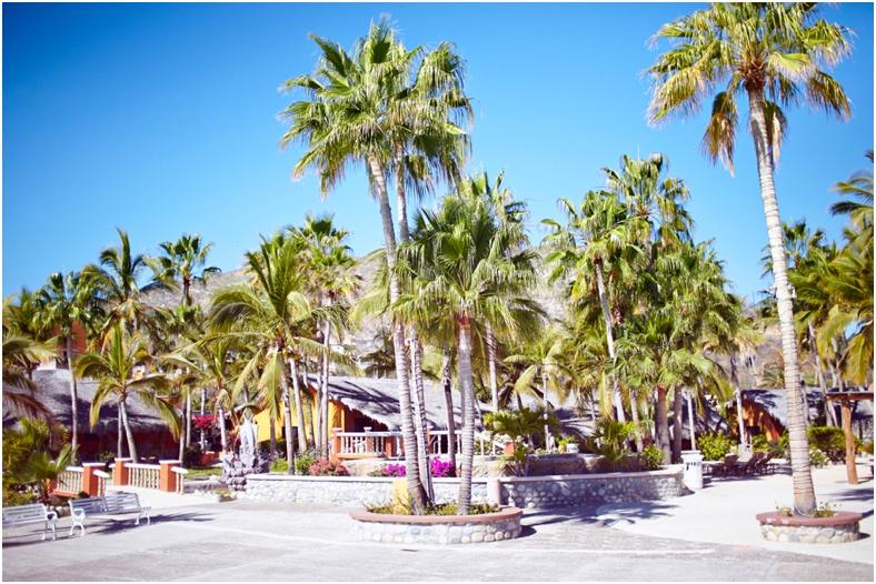 Mexico wedding venue resort