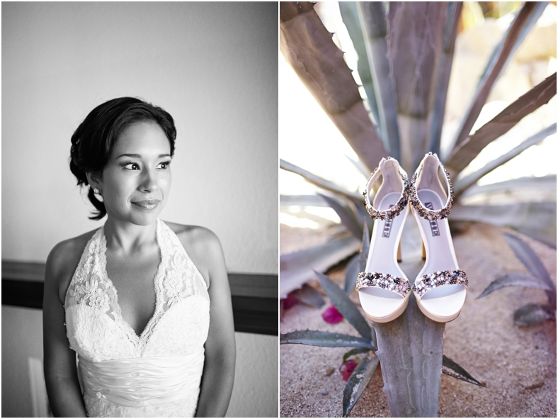 Mexico Wedding, Rhea & shoes on succulents