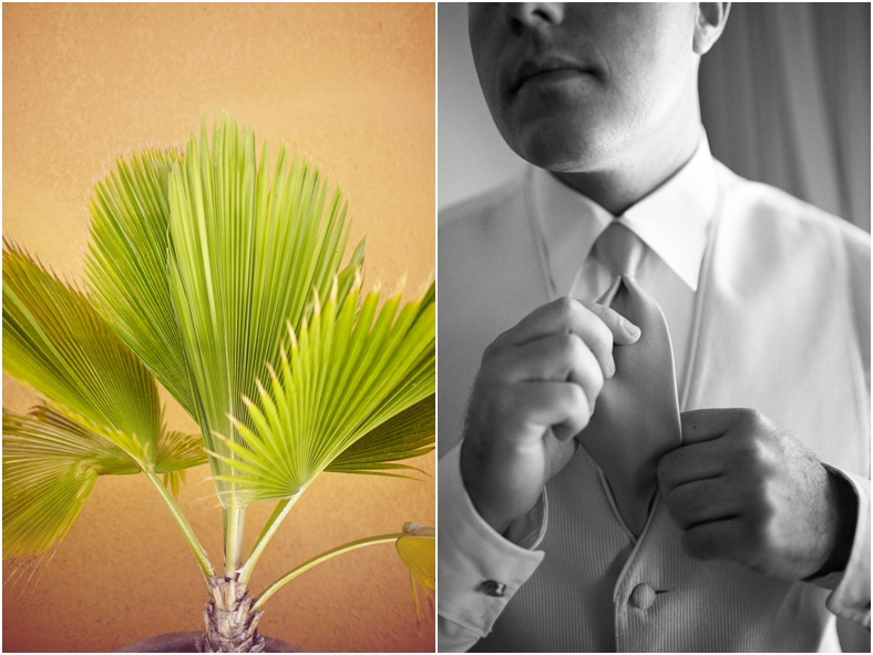 Mexico wedding, palm tree and groom getting ready