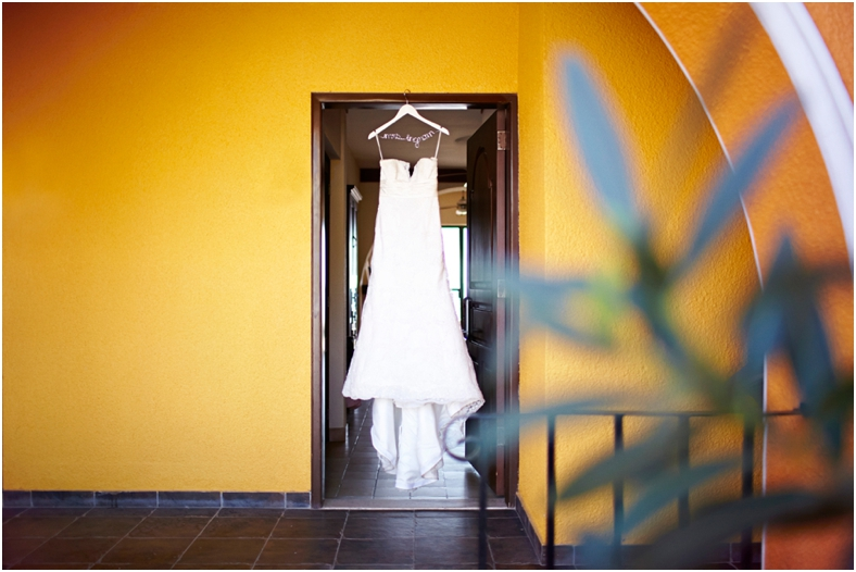 Mexico wedding, dress against yellow wall and succulents