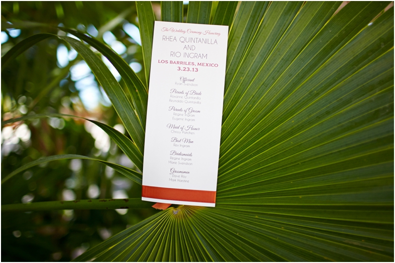 Mexico wedding ceremony invitation on palm frond