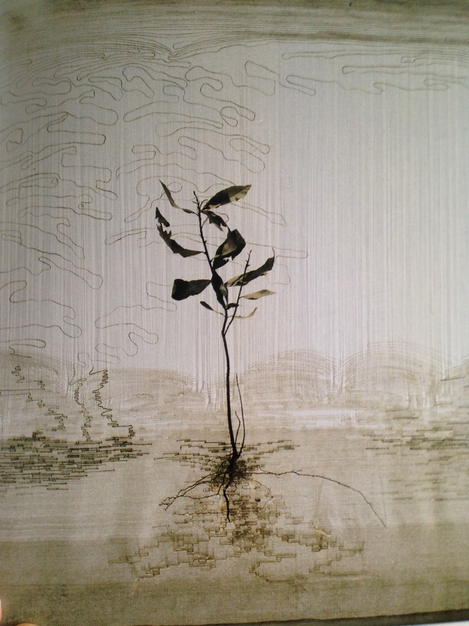 """Marisa Bronzini, """"Filo 31 (Fil 31)"""", 1989. 80 x 70 cm. Soie, coton, lin, laurier (Catalogue """" Filo 1996"""")"""
