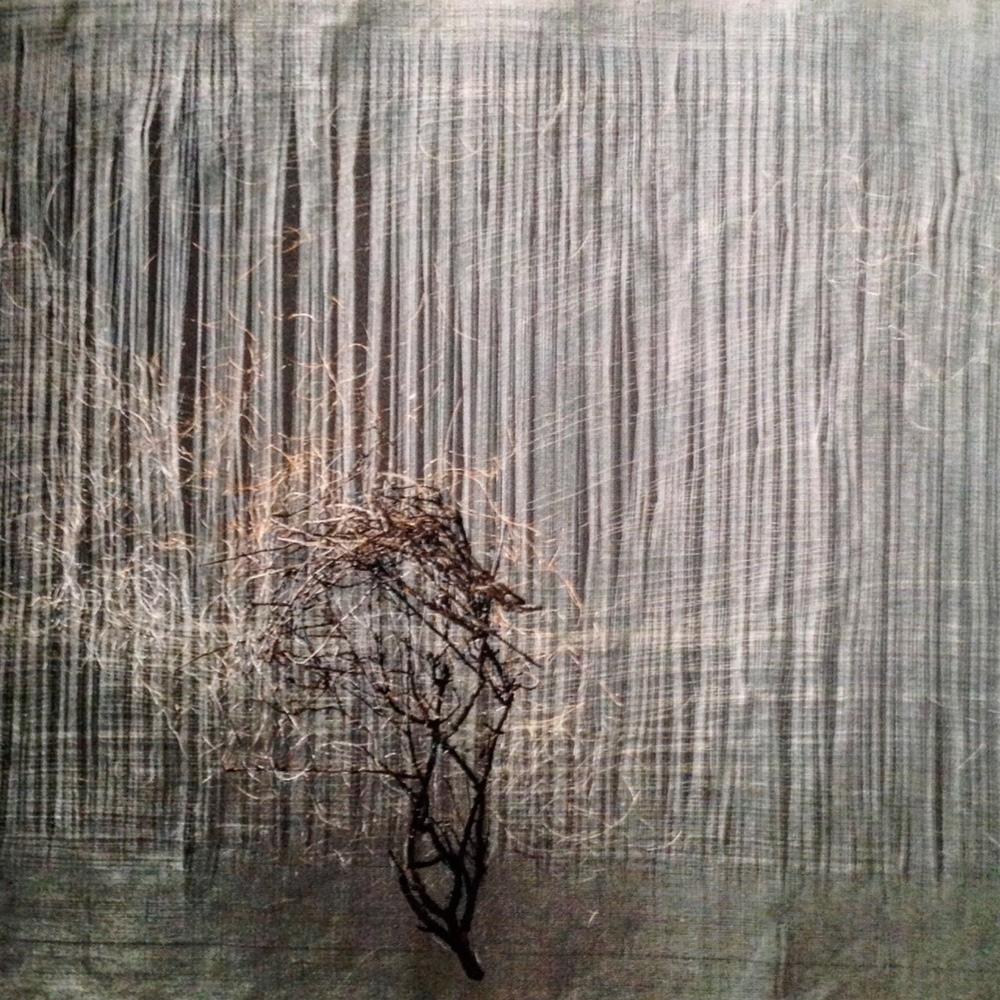 """Marisa Bronzini, """"Filo 32 (Fil 32)"""", 1990. 40 x 45 cm. Cuivre, coton, thym. Collection particulière."""