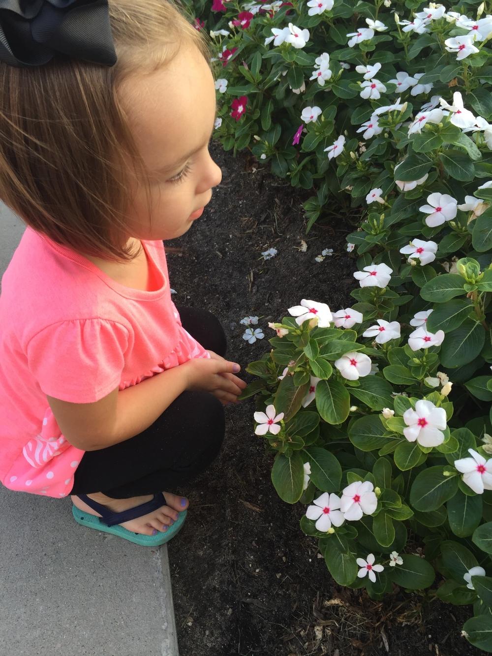 My littlest enjoying the flowers at the Market