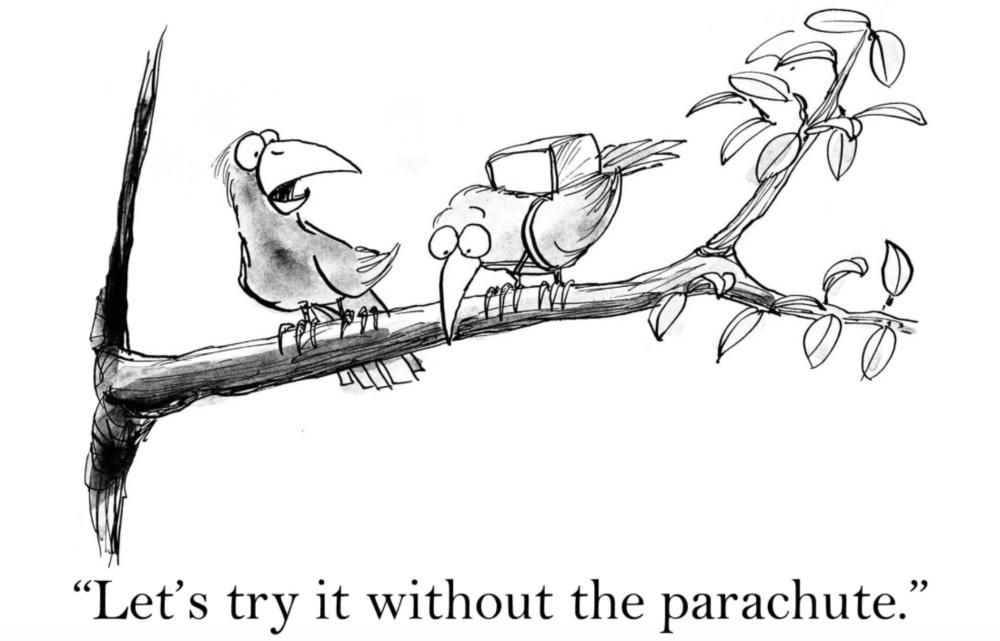 Risky Bird.png