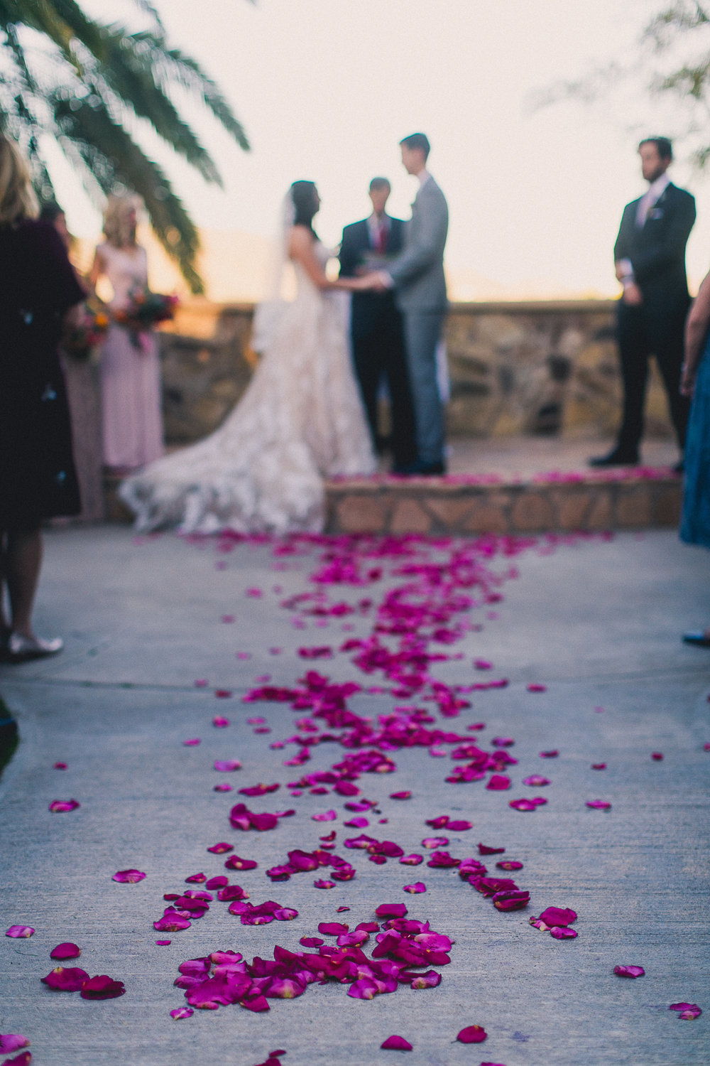 Aisle Petals - We have a handy chart to help you price out your aisle petals. Whether you're looking for a loose scattering or wall to wall petals, we've got you covered. Aisle petals start at $15/ft.