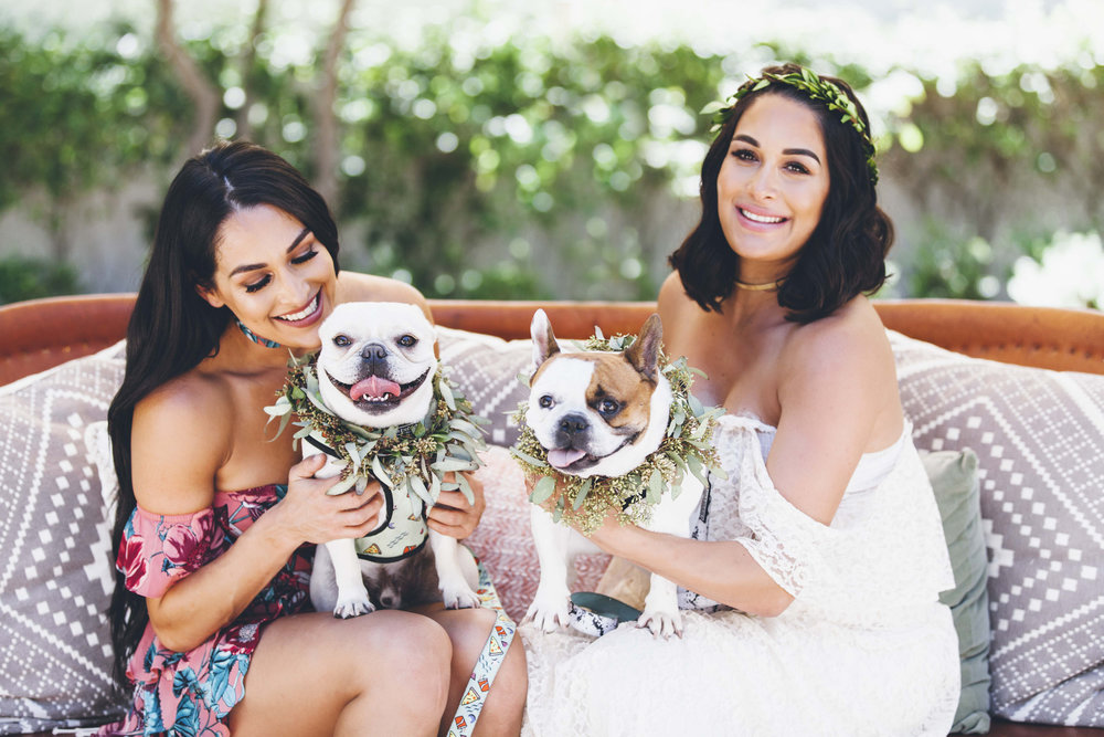 Brie Bella's Arizona Baby Shower