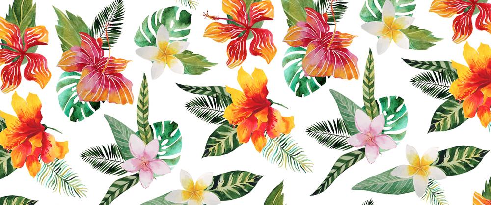 summer pattern 01.jpg