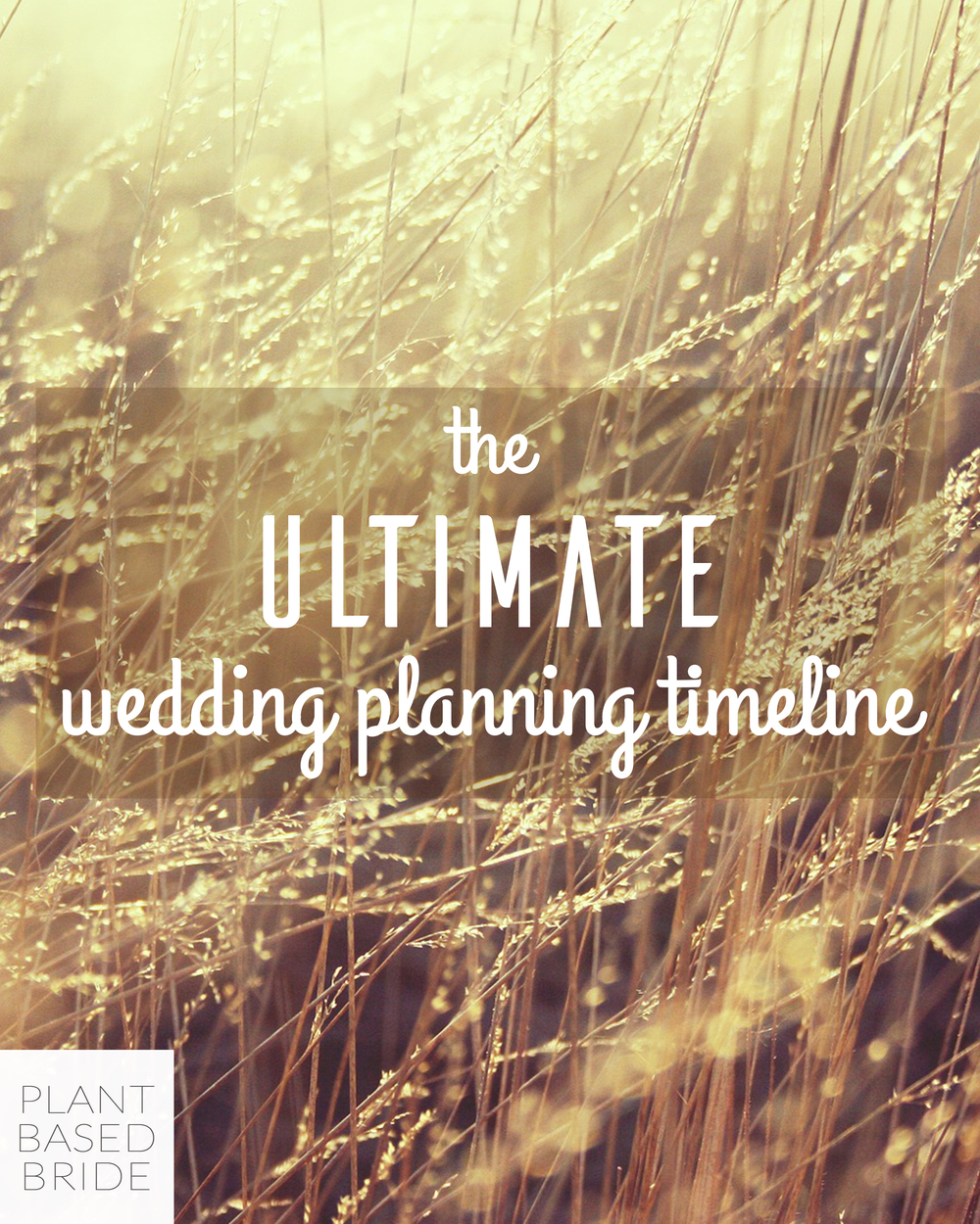 Must read!  Pin it now, you'll thank me later!  This is the BEST wedding planing timeline I've seen.  So comprehensive!  From plantbasedbride.com