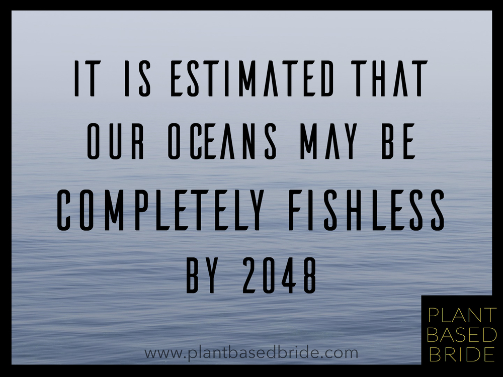 A fascinating article on the impact of eating fish from plantbasedbride.com  Check it out!