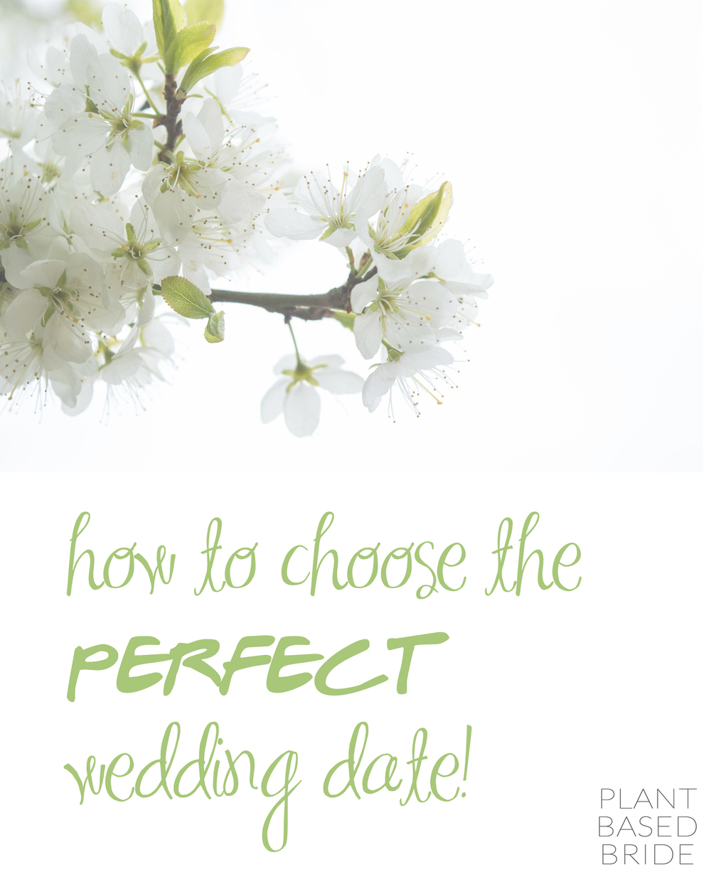 Are you and your partner having trouble choosing your wedding date?  Check out this post for 5 easy, actionable steps to pick the perfect day from plantbasedbride.com!