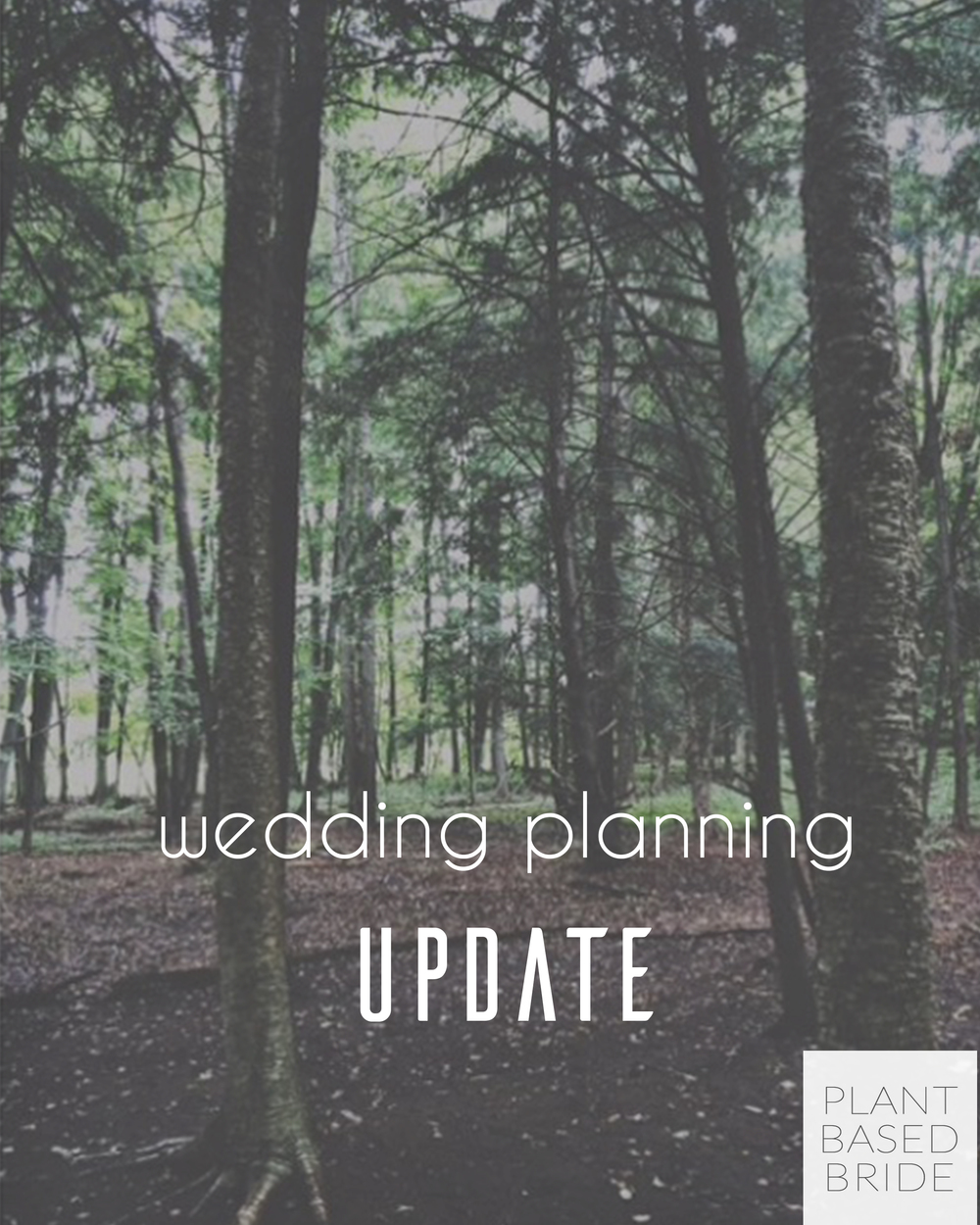 Let me update you on where I am in my wedding planning!  Am I on track or WAY behind? from plantbasedbride.com