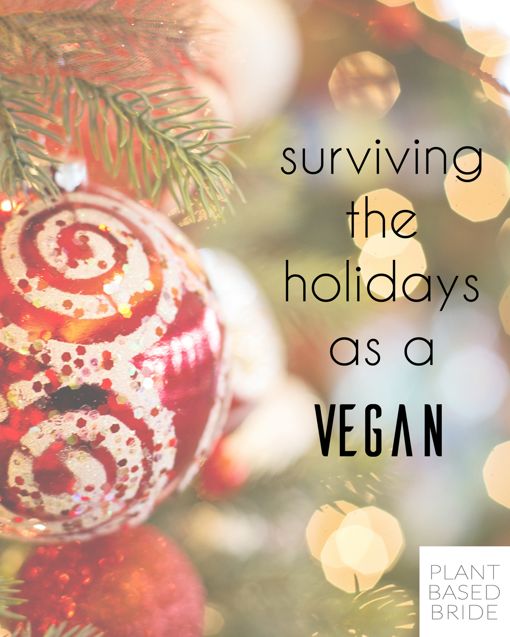 Worried about surviving the holidays as a vegan?  Don't be!  Head over to the blog and learn my best tips and tricks to make it a breeze!