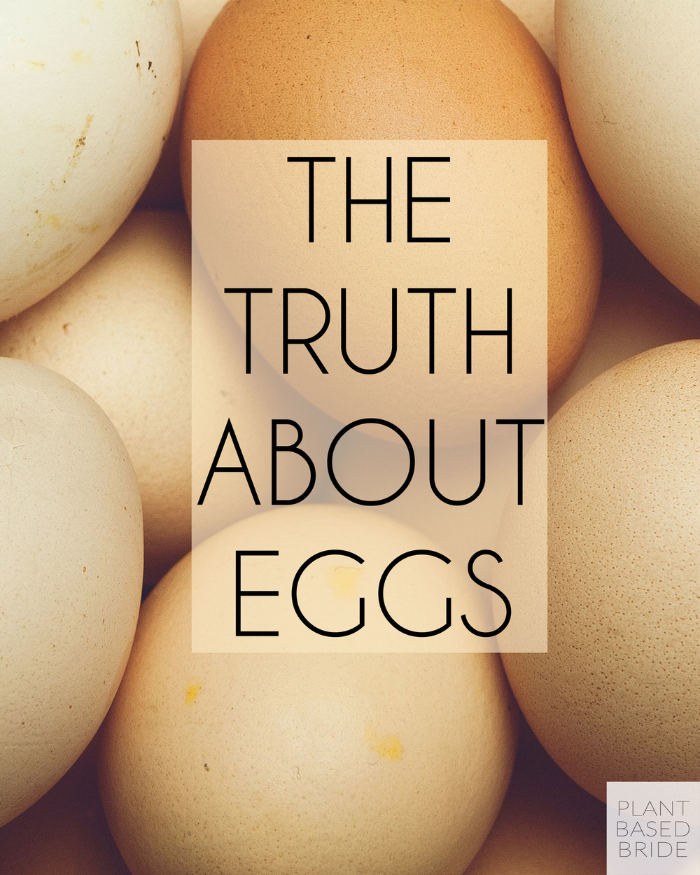 Are eggs healthy?  Are hens happy on egg farms?  Are eggs good for the environment?  Find out now!  What you learn may just surprise you.