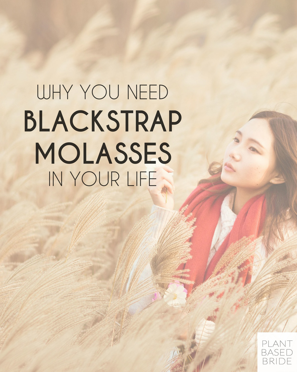 Blackstrap Molasses - what is it and why should you be taking it daily? // Plant Based Bride
