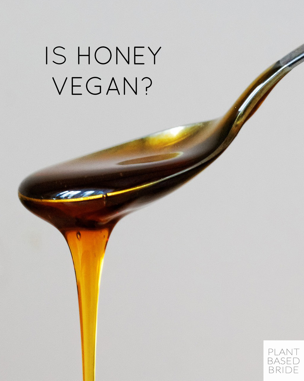 Is Honey Vegan? // Plant Based Bride