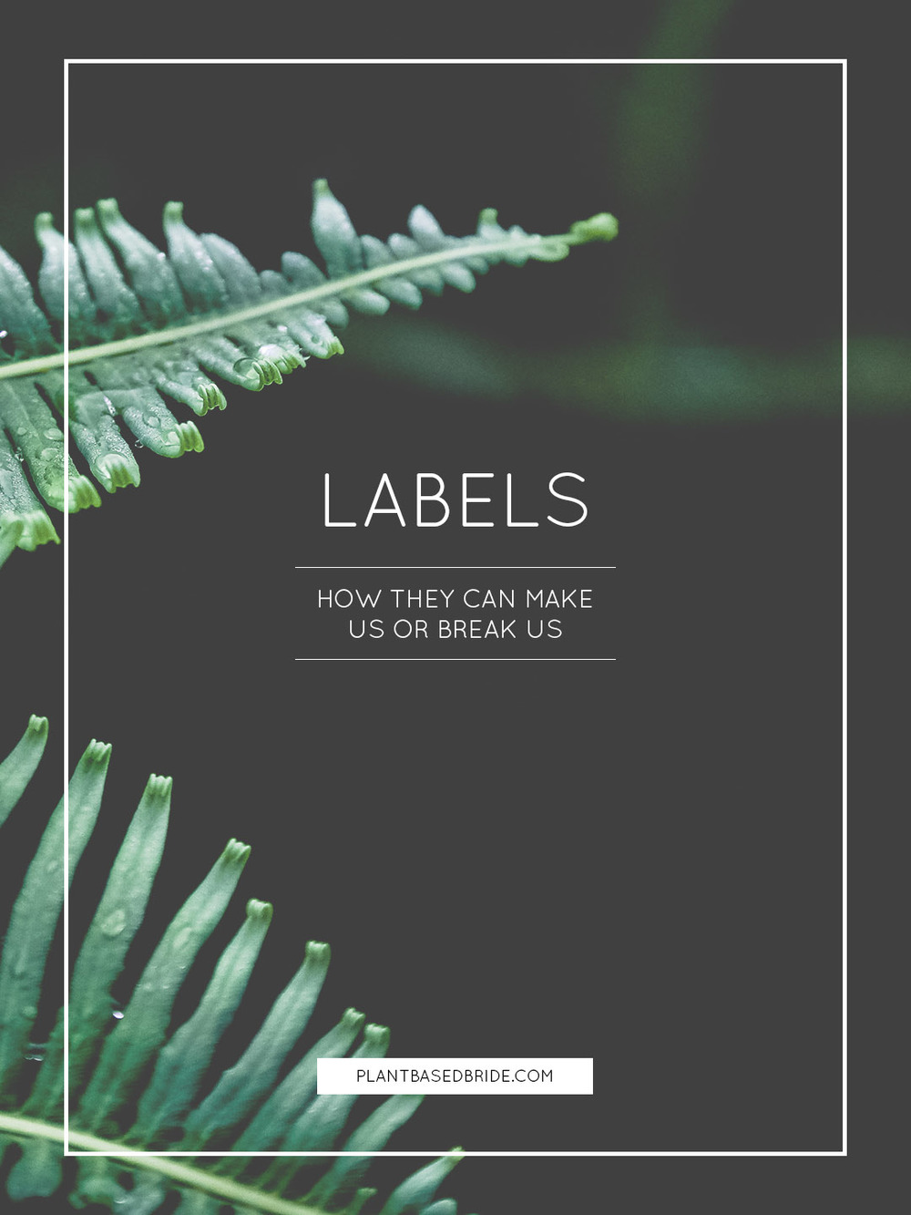 Labels: How They Can Make Us Or Break Us // Plant Based Bride
