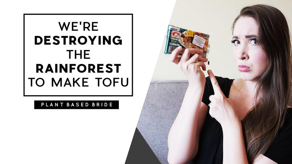 "Vegan Myth Buster: ""We're Destroying The Rainforest To Make Tofu"""