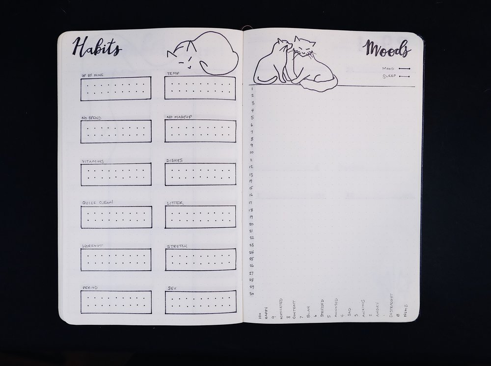 November Bullet Journal Habits and Moods Cat Theme // Plant Based Bride