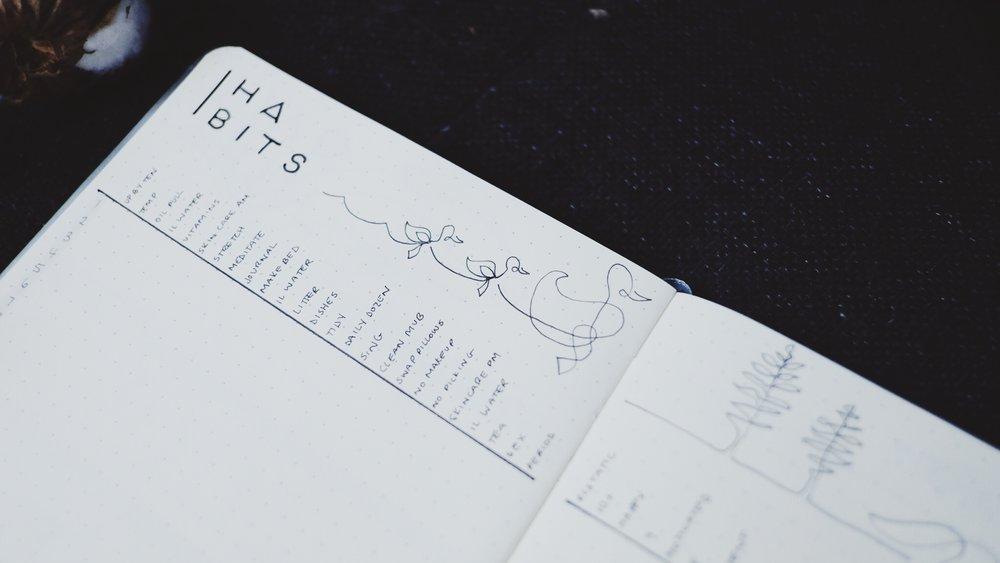 April 2018 Bullet Journal Minimalist Theme Habit Tracker / Line Art Ducks // Plant Based Bride