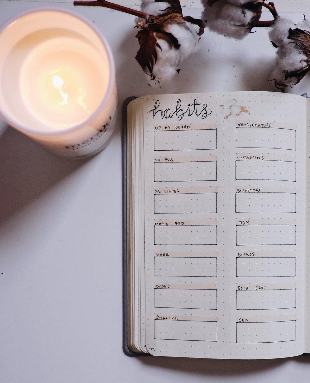 June 2018 Bullet Journal Simple Cotton Theme Habit Tracker // Plant Based Bride