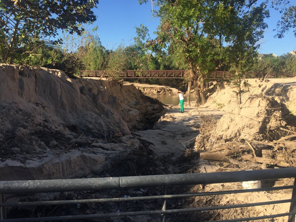 Sand peel site in Buffalo Bayou Park, taken October 2017