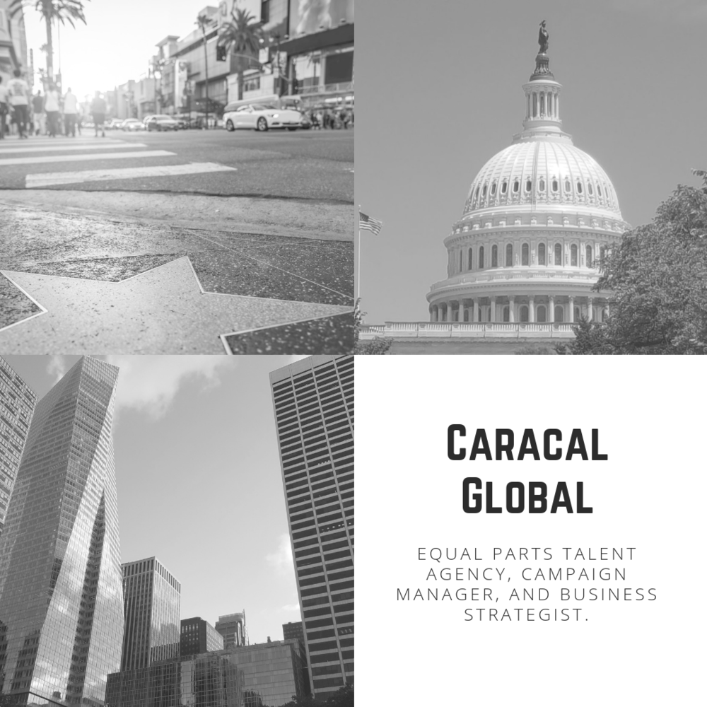 Caracal Global What.png