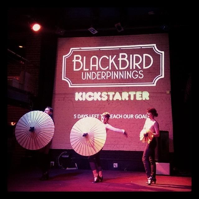 blackbird_underpinnings_kickstarter
