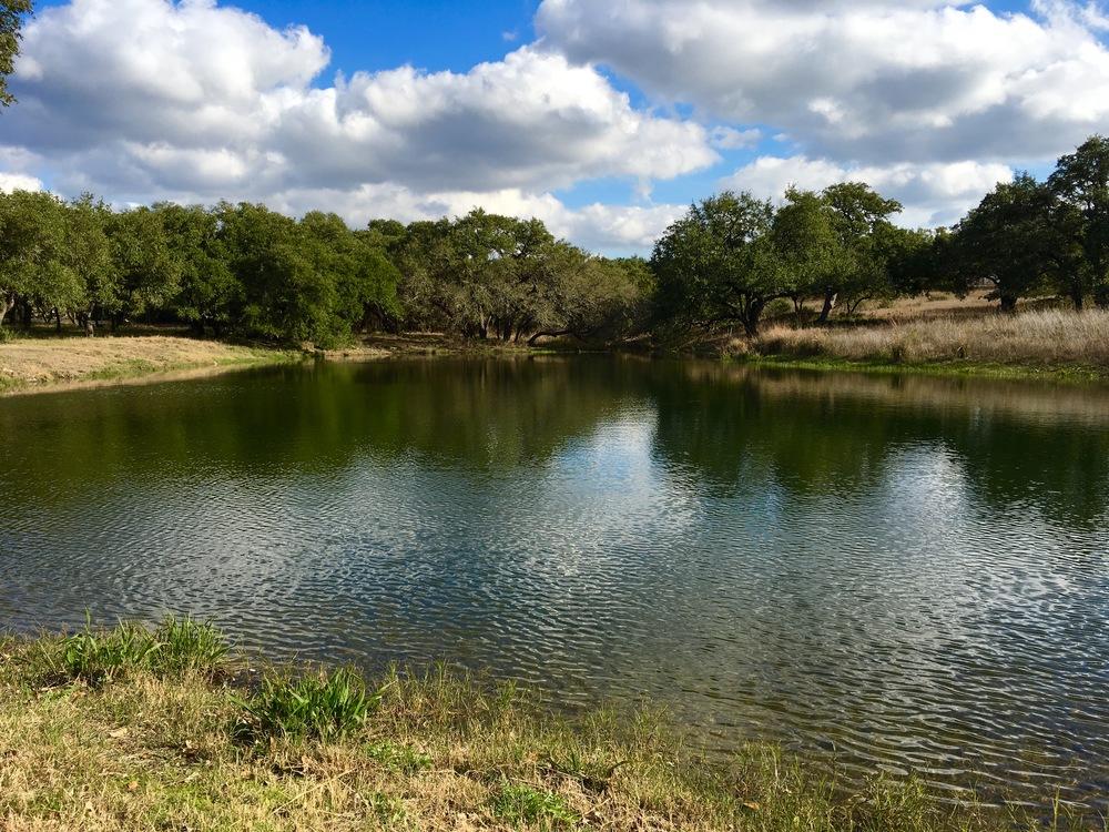 Pond (ceremony site/behind bridal suite)