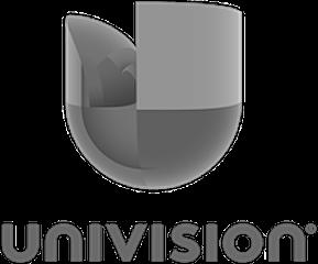 univision_prizma2.png