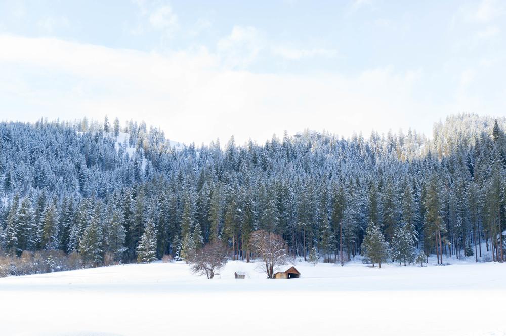 snow-51.jpg