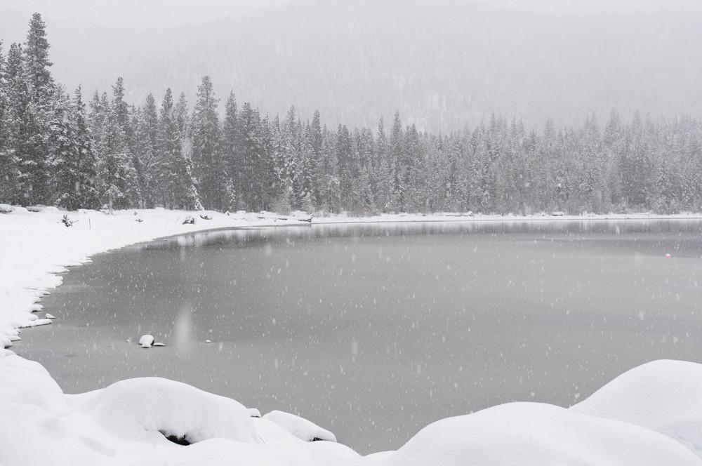 snow-36.jpg