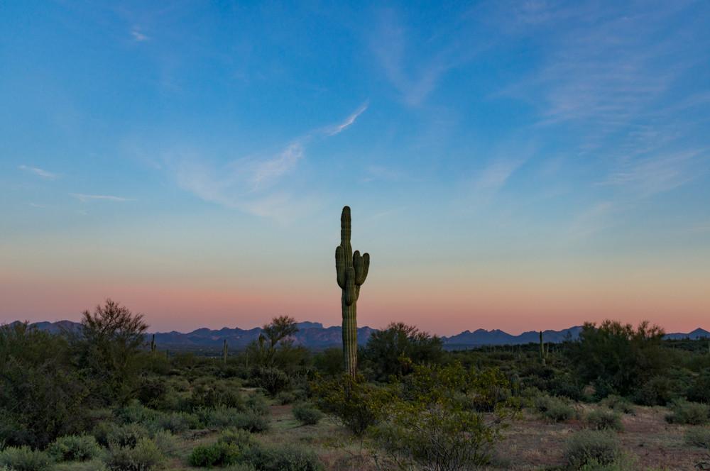 Scottsdale-65.jpg