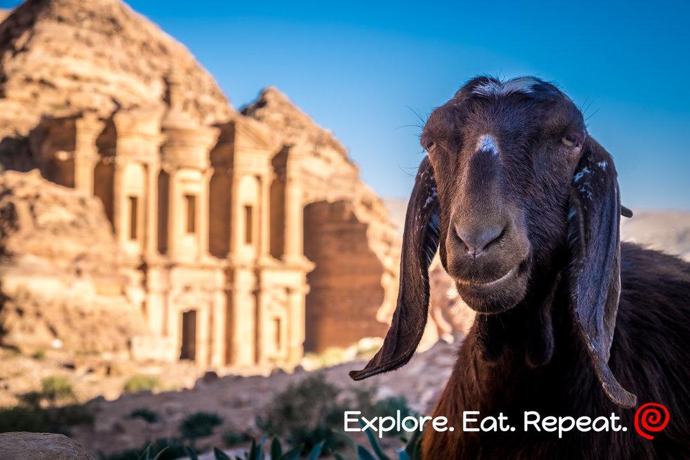 Petra-5447.jpg