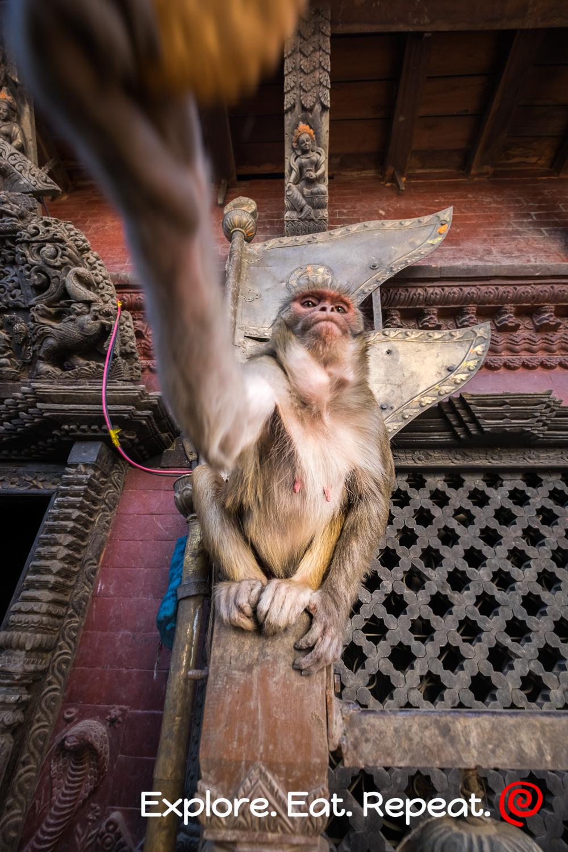 kathmandu-5789.jpg