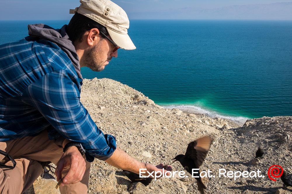 Dead Sea-2615.jpg