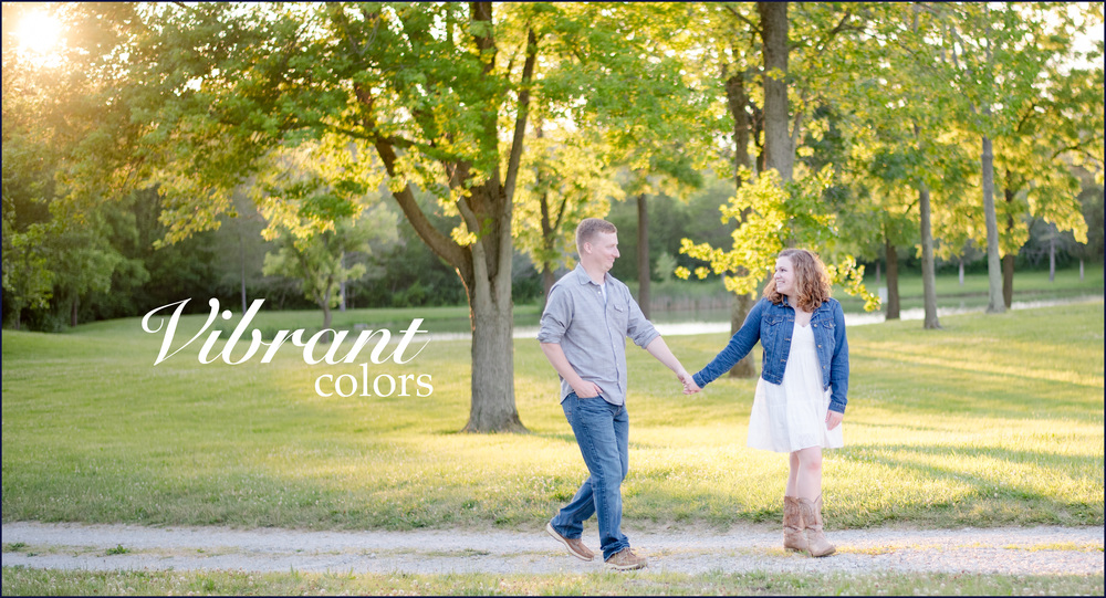 Vibrant Colors website cover.jpg