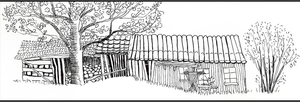 Old shed drawing.jpg