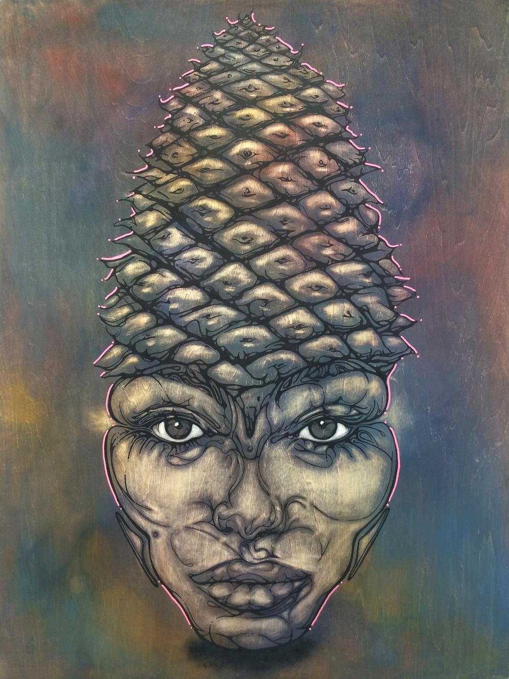 Shayda Pine