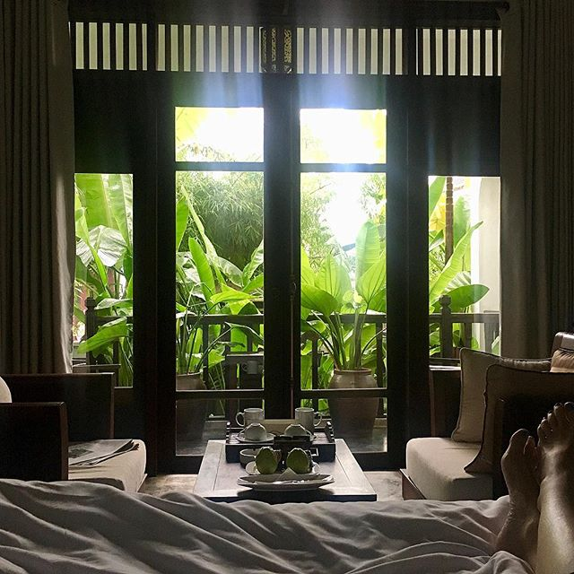 Christmas trees just aren't happening when we're so far away from home. But we do enjoy waking to these depths of palm and bamboo green. The hospitality has been outstanding. @hoian_ancienthousevillage in Vietnam. 🌿 . . . #christmastreealternative #palms #vietnam #hoian #vietnamtravel #hoianhotel #hoianspa #southeastasia #travelstoke #travelgram #bamboo #travel #travelguide
