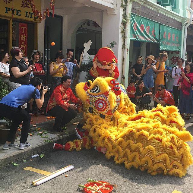 Dancing Lion tossing mandarin orange 🍊 airtime at Pek Sin Choon Pte Ltd . . . . #liondance #singapore #tea #teasg #teamerchant #singaporeculture #lunarnewyear #yearofthepig #mosquestreet #lions #cny #cny2019 #oranges #peksinchoon #caishen
