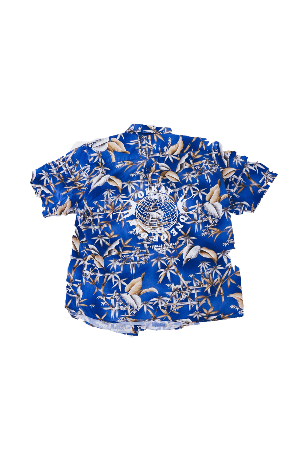 blue floral back.png