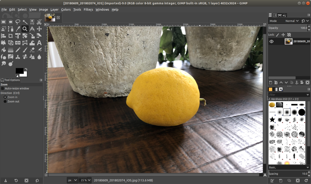 gimp_lemon_open.png