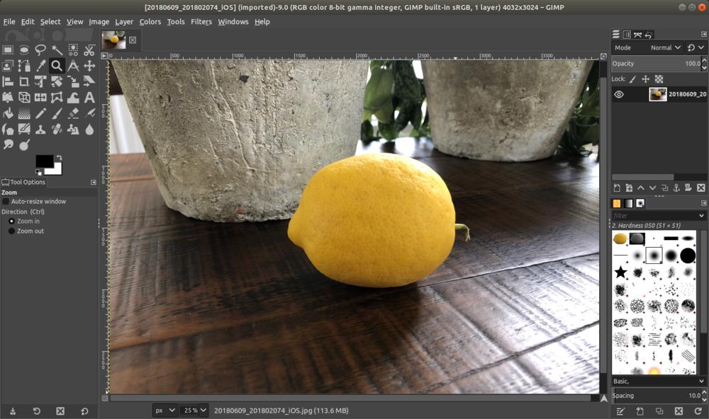 gimp_lemon_open.png