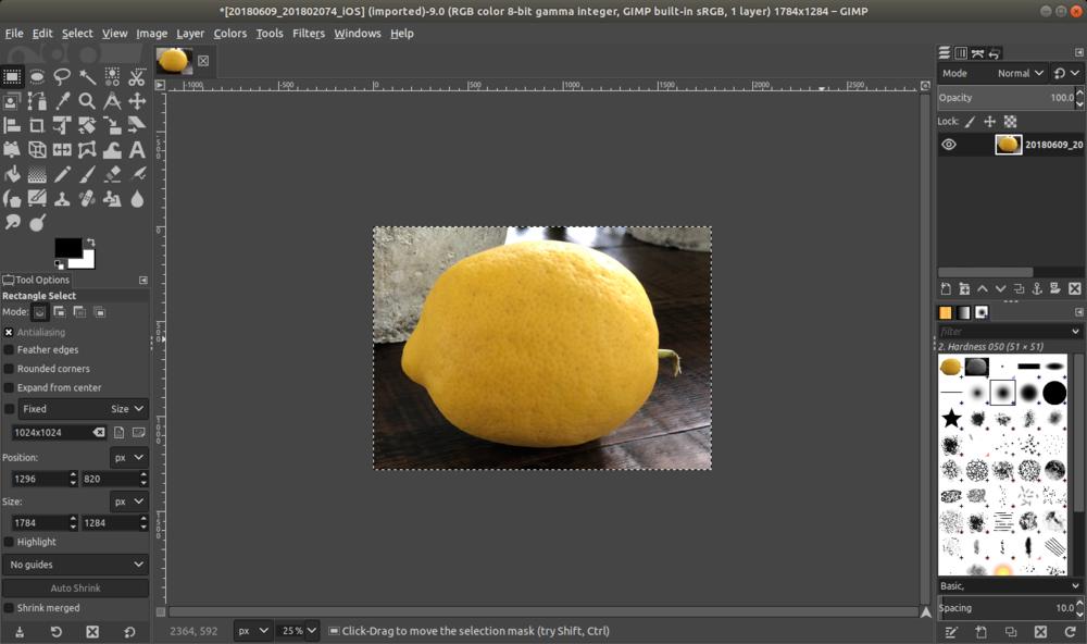 gimp_lemon_cropped.png
