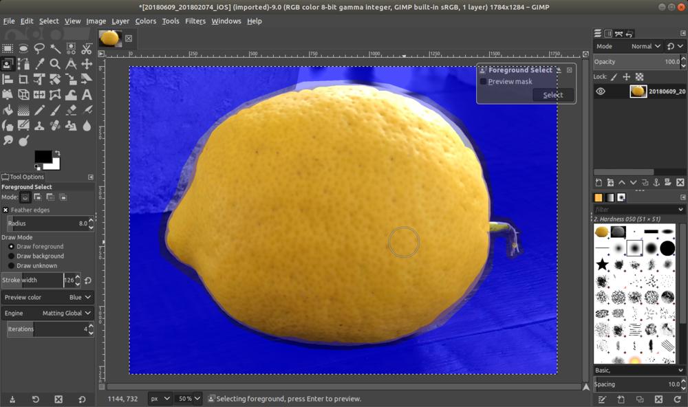 gimp_lemon_foregroundselected.png