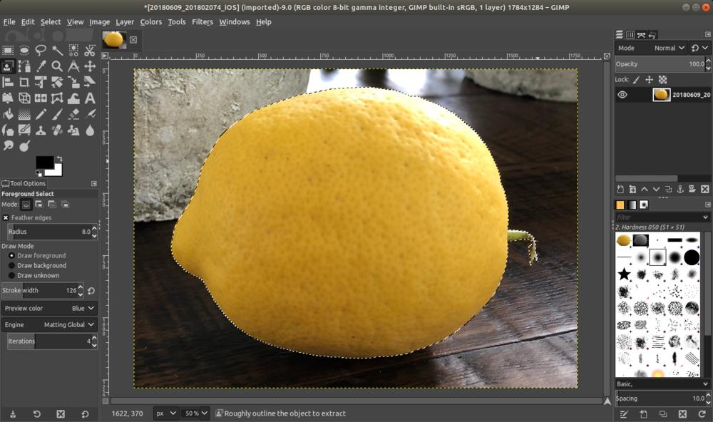 gimp_lemon_selected.png