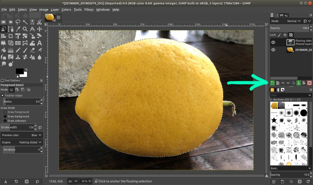 gimp_lemon_paste.png