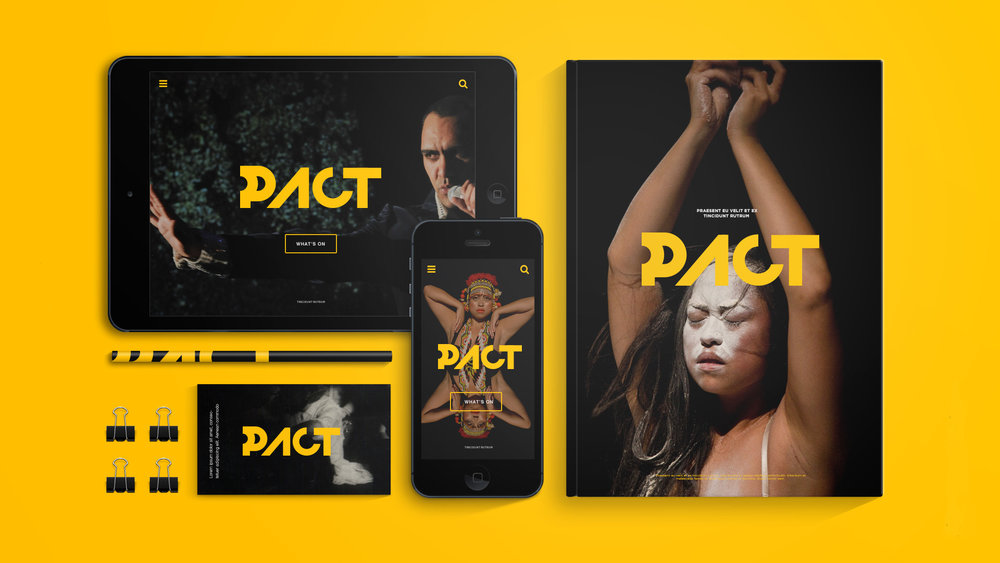 Danilo-Brandao_PACT_Branding_v01.jpg